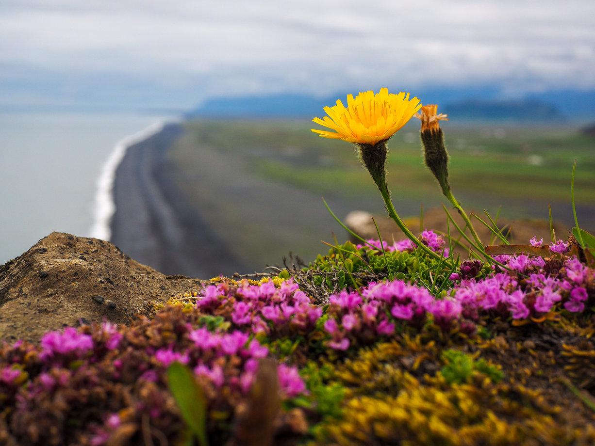 Wiosenne krajobrazy