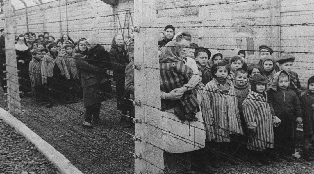 Ocalałe dzieci z obozu koncentracyjnego KL Auschwitz w dniu wyzwolenia obozu. Oświęcim, 27.01.1945.