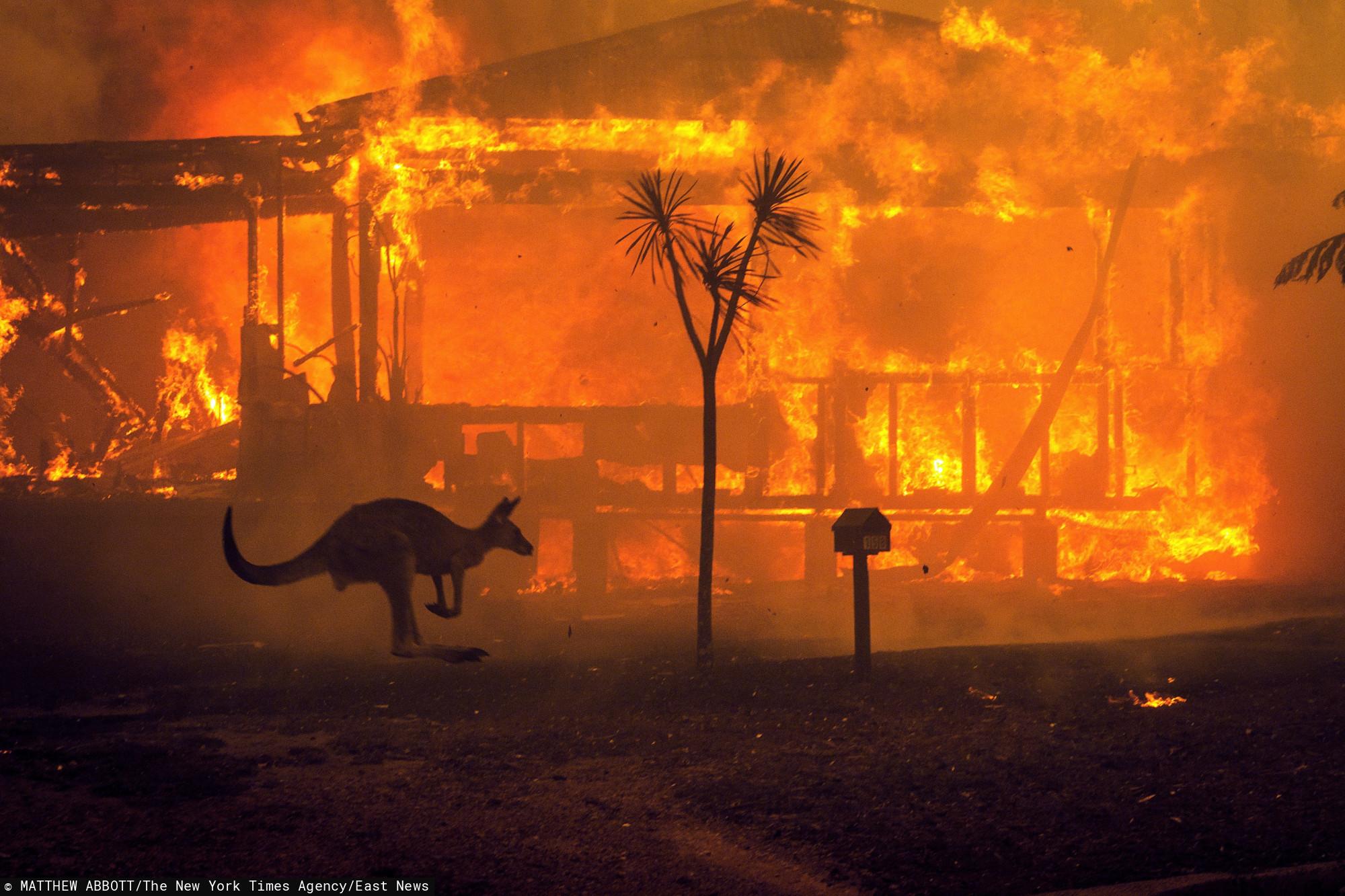 Australia płonie a ofiar jest coraz więcej. NASA pokazuje ...