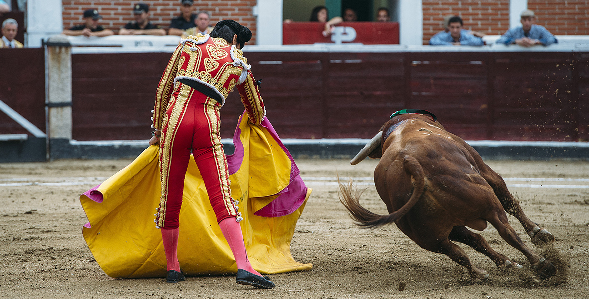 Hiszpanie uwielbiają korridę