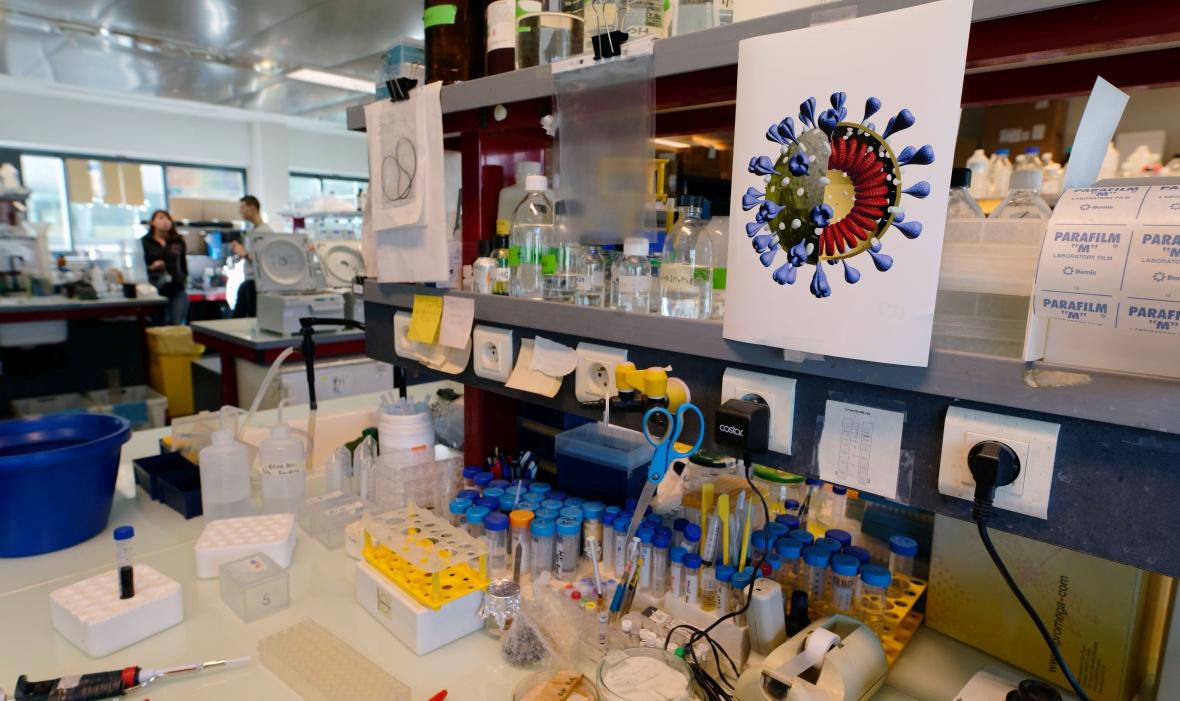 Laboratorium Instytutu Pasteura w Lille we Francji, gdzie naukowcy poszukują szczepionki na koronawirusa