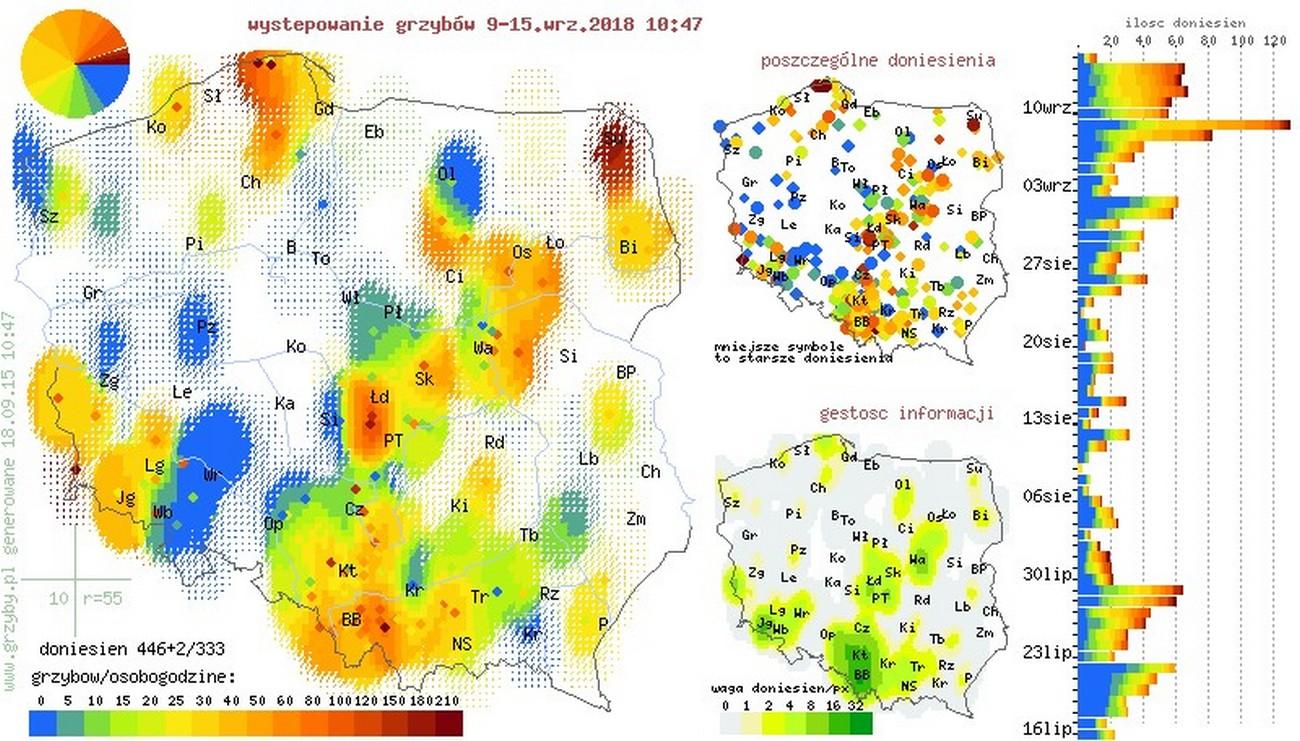 Gdzie Na Grzyby Oto Grzybowa Mapa Polski Wp Finanse