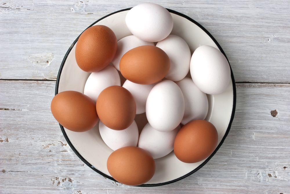 Anatomia jajka
